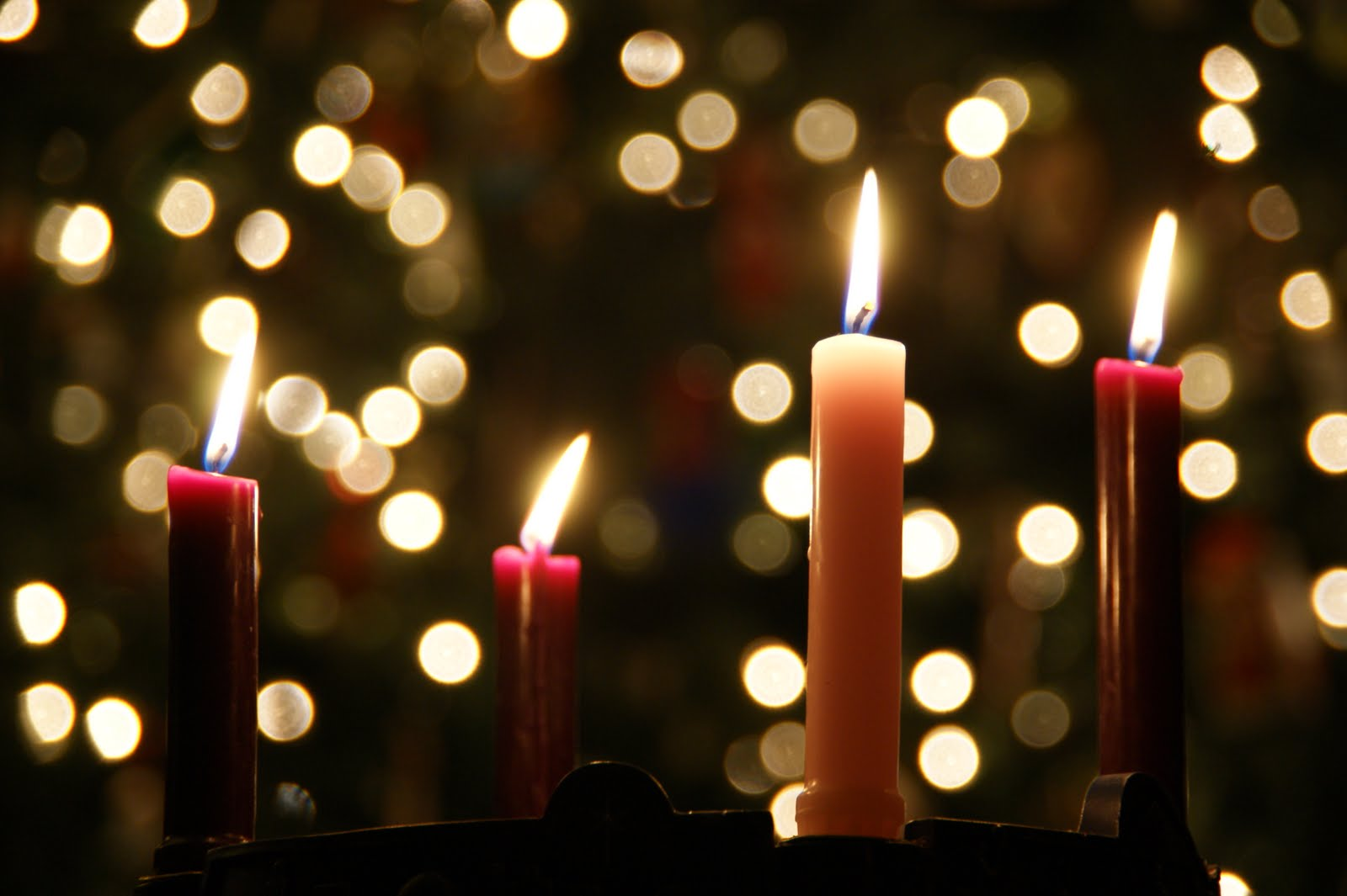 advent is here diocese of laredo